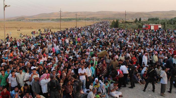refugiaţi_m4